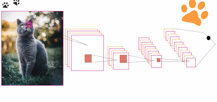 image classification with python