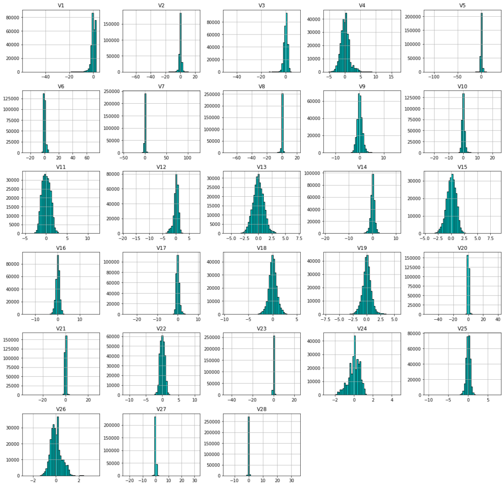 Feature frequency distributions on credit card data