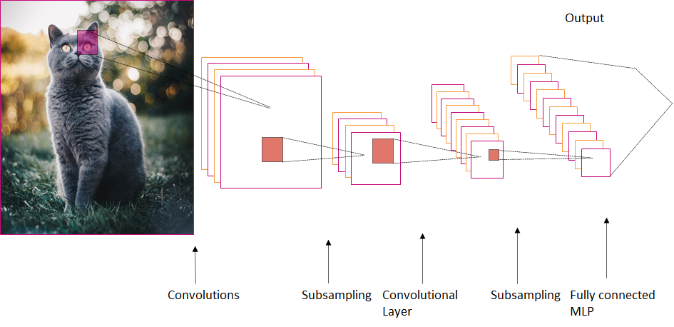 Process of convolutions and filters in a CNN - Classifying Cats and Dogs